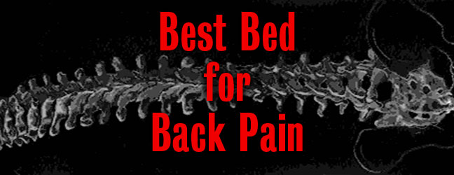 Dear Dave: Best Mattress for Back Pain